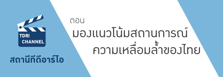 banner-tdri-channel